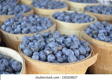 Fresh Michigan Blueberries for sale at a local Farmers Market