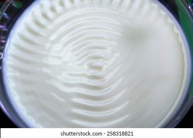 Fresh milk cymatics