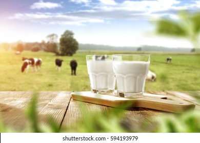 fresh milk and spring time