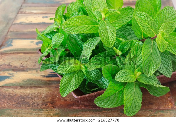 Fresh mint in bowl on wooden table. Selective focus