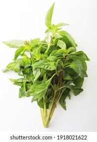 Fresh mint bunch on white background. Top view. Close-up.