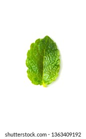 Fresh mint isolated on white background. Leaves for coktails or fresh fruits. Summer tempalte for design, Food mockup