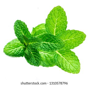 Fresh Mint leaf isolated on white background. Raw Spearmint, peppermint leaves