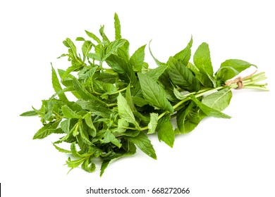 Fresh mint leaves bunch isolated on white background.