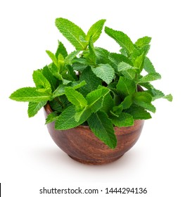 Fresh mint leaves bunch on white background, isolated peppermint in wooden bowl, common herb mint bundle