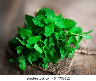 Fresh mint leaves herb on wooden table, selective focus close up. Green mint with copy space