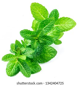 Fresh mint leaves isolated on white background, top view. Close up row of peppermint