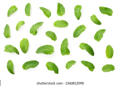 fresh mint leaves isolated on white background, top view