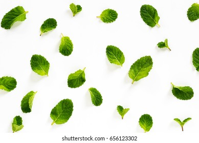 Fresh mint leaves on white background top view images.