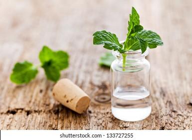 fresh mint oil in a bottle