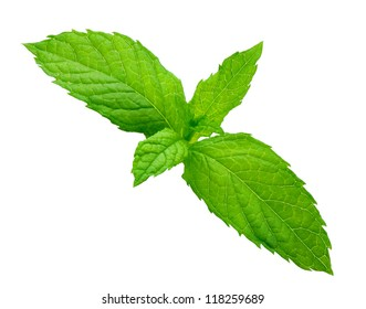 fresh mint sheet trimmed and isolated