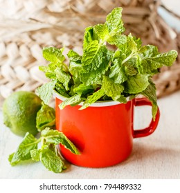 Fresh mint in a small red enameled cup on a wooden white and blue washed surface. Straw hat and a lime on the background. Square image