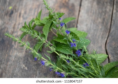 fresh mint and Ysop on an old wooden table