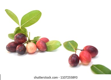 Fresh Miracle berry on white background