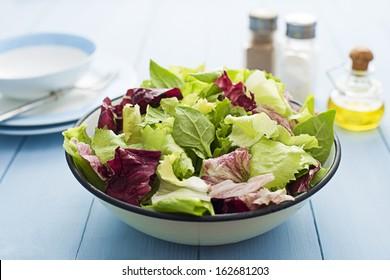 Fresh mixed green salad in a bowl close up