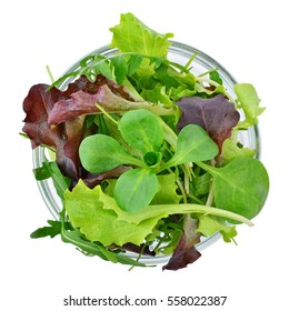 Fresh mixed greens leaf vegetables in bowl isolated, overhead view
