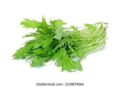 fresh mizuna vegetable isolated on white background