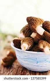 Fresh morel mushrooms on a blue plate