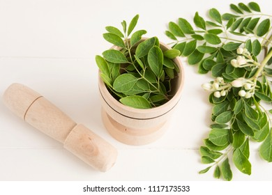Fresh moringa leaves- Moringa Oleifera