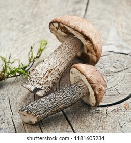 Fresh mushrooms close up/toned photo