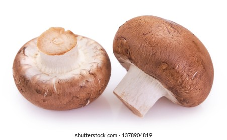 fresh mushrooms isolated on white background