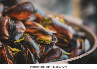 Fresh mussels at grill pan. Seafood barbecue outdoors. Picnic healthy food, mussels in shells. Selective focus. Plenty of mussel shells cooking at large metallic pan. Copy space