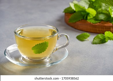 Fresh natural  melissa , lemon balm herbal tea in glass cup.