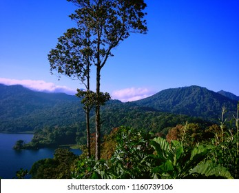 Fresh Natural Mountains Lake Buyan Scenery At Wanagiri Village, Buleleng, Bali Indonesia
