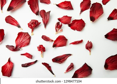 fresh natural red hibiscus petals on a clean background