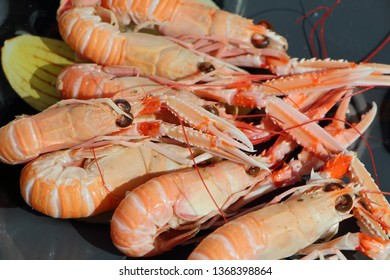 Fresh nephrops fished in Brittany on a plate
