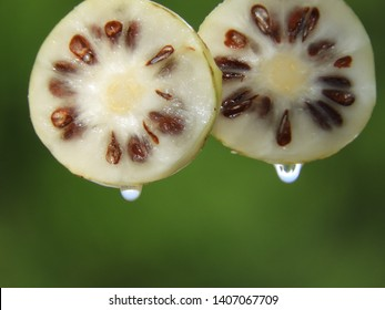 Fresh noni fruit slice with water drop in green blurred background
