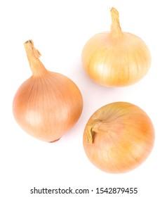 Fresh onion bulb isolated on white background
