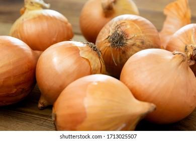 Fresh onion vegetable bulbs on wooden background.