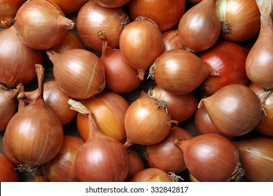 Onion Plant Images, Stock Photos & Vectors | Shutterstock