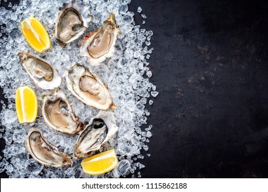 Fresh opened oyster with sliced lemon offered as top view on crushed ice with copy space right