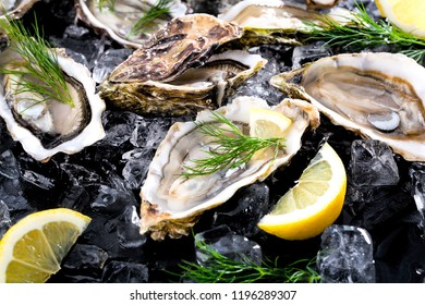 Fresh opened oyster with sliced lemon offered as top view on crushed ice with copy space