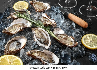 Fresh opened oysters, ice and lemon on a black stone textured background. Top view. Close-up shot.
