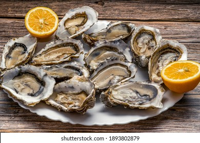 Fresh opened oysters in a white plate with lemon on dark wooden textured background, top view. High quality photo