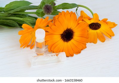Fresh orange flowers of calendula officinalis and bottles of cosmetic oils on a light background. The concept of cosmetology. close-up