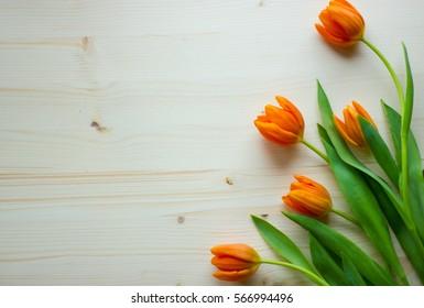 Fresh orange tulips on the wooden background