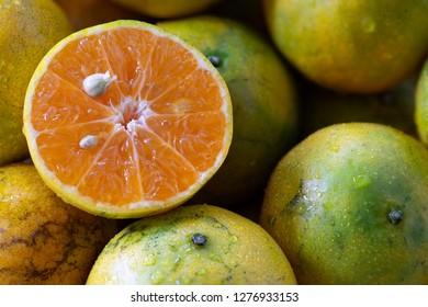 Fresh Oranges cut half on pile of oranges / select focus