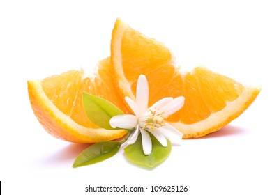 Fresh oranges on white ground