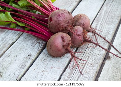 Fresh organic beet, beetroot on the grey rustic wooden background. Closeup, selective focus