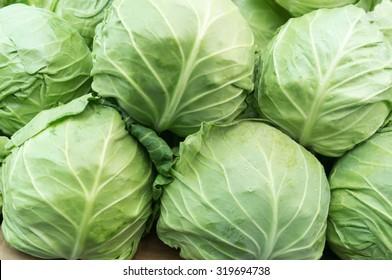 Fresh Organic Cabbage on Marketplace