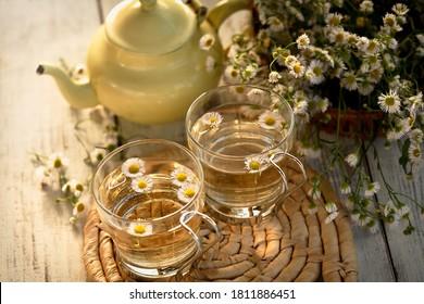 fresh organic chamomile tea with glass cups