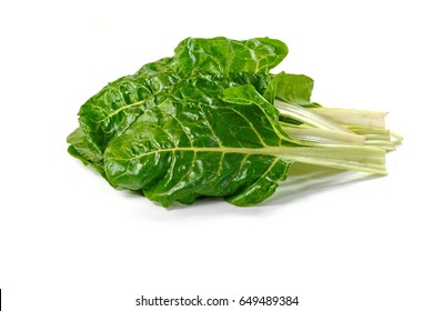how to keep silver beet fresh