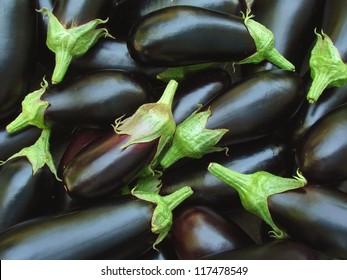 fresh organic eggplants as food background