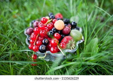 fresh organic fruits in a glass bowl on green grass