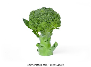 Fresh organic green broccoli with leaf isolated on white background with clipping path. Antioxidant, healthy food and plant concept.