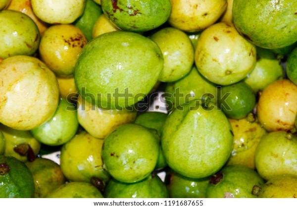 Fresh Organic Green Ripe Guava Psidium Stock Photo (Edit Now